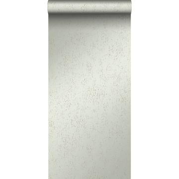 papier peint plaque métallique vieillie, altérée et touchée par les intempéries vert menthe clair