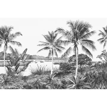 papier peint panoramique paysage avec des palmiers noir et blanc