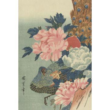 papier peint panoramique paon et pivoines vieux rose, vert et bleu